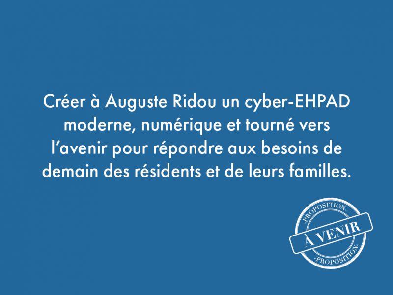 81. Créer à Auguste Ridou un cyber-EHPAD moderne, numérique et tourné vers l'avenir pour répondre aux besoins de demain des résidents et de leurs familles.