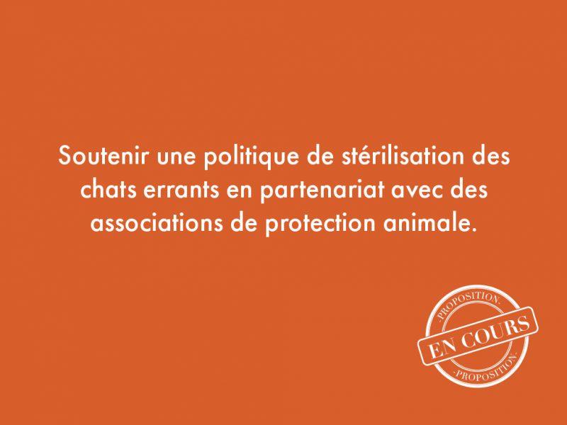 118. Soutenir une politique de stérilisation des chats errants en partenariat avec des associations de protection animale.