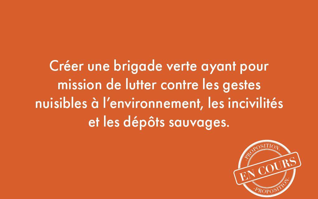 15. Créer une brigade verte ayant pour mission de lutter contre les gestes nuisibles à l'environnement, les incivilités et les dépôts sauvages.